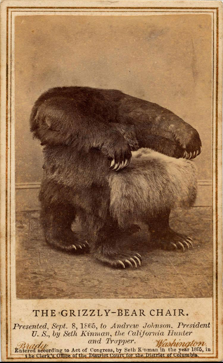 Grizzly Bear Chair You Will Never Be This Badass