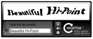 reCAPTCHA-Beautiful-Hi-Point-Troll