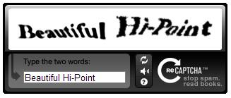 reCAPTCHA-Beautiful-Hi-Point-Troll