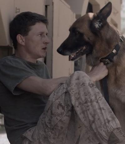 Dog Tags Trailer