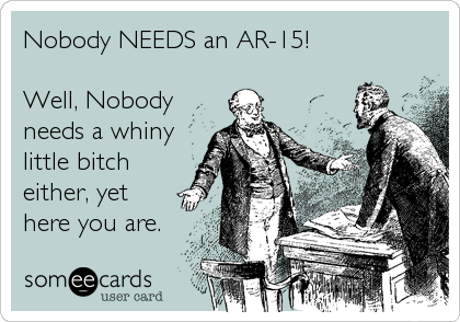 Someecards-AR15