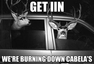 Deer-Meme-Cabelas