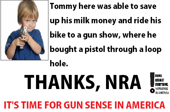 NRA-Loop-Hole