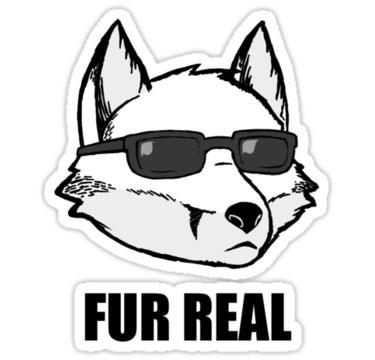 furries-fur-real