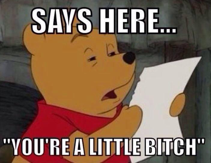 Pooh-Little-Bitch