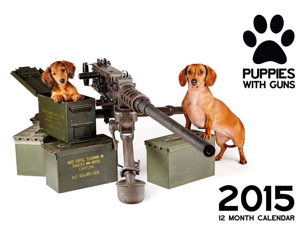 Puppies-With-Guns-1