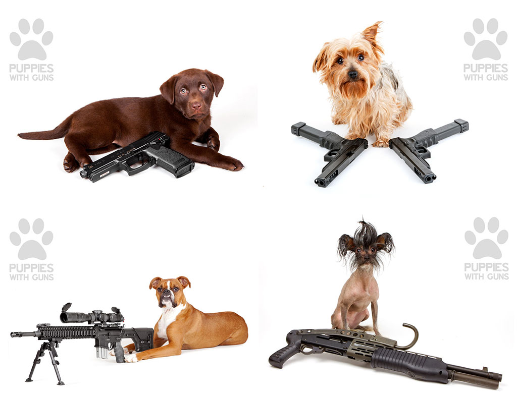 Puppies-With-Guns-2