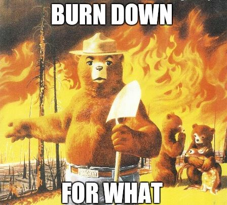 smokey-the-bear-meme